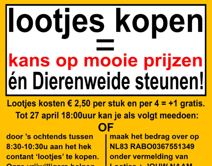 Poster A3 Koningsdag Loterij 2021